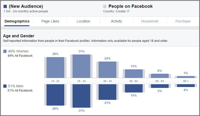 Facebook marketing audience insights